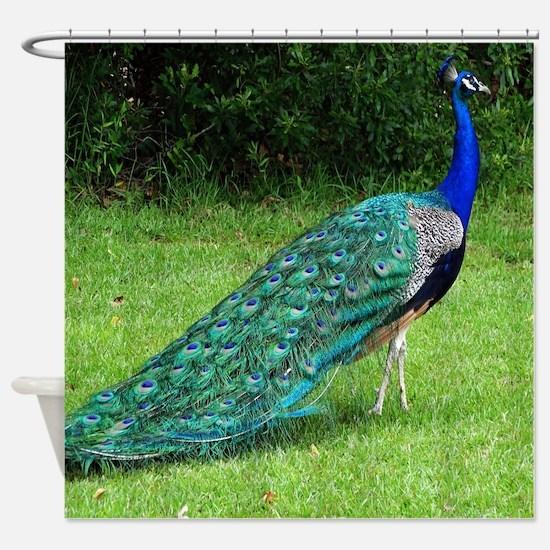 Velvet Blue Peacock Shower Curtain