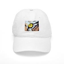 Eye of the Tiger Baseball Cap