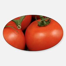 Cute Organic tomato Decal
