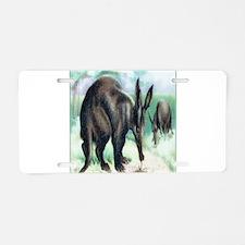 Aardvark Aluminum License Plate