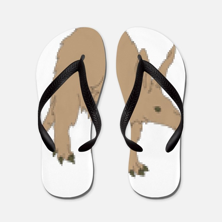 Aardvark Flip Flops
