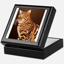 Bengal Kitty Keepsake Box