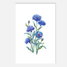 Blue Bonnets Postcards (Package of 8)