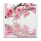 Cherry blossom Drink Coasters