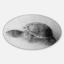 Black and White Turtle Decal