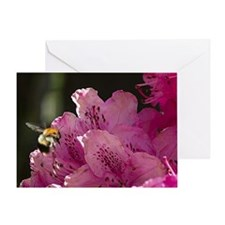 Bee Enjoying a Tasty Rhodadendrum Greeting Card
