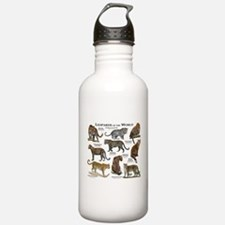 Leopards of the World Water Bottle