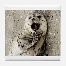 Harbor Seal Pup Tile Coaster