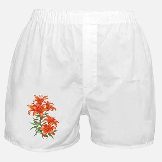Orange Daylilies Boxer Shorts