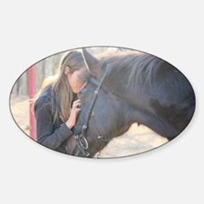 A Horse Is The Cure Decal