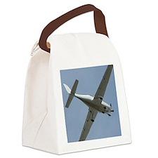 Cute Miscellaneous Canvas Lunch Bag