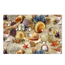 Seashells And Starfish Postcards (Package of 8)