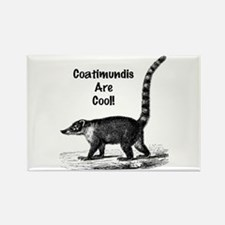 Coatimundis are Cool! Rectangle Magnet