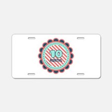 10 Months Aluminum License Plate