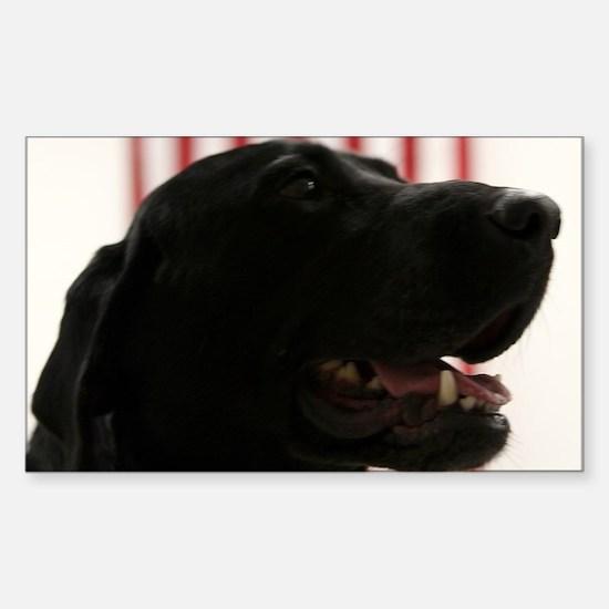 All-American Black Labrador Retriever Decal