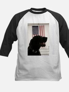 All-American Black Labrador Retrie Baseball Jersey