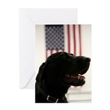All-American Black Labrador Retriev Greeting Cards