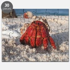 Unique Crabs Puzzle
