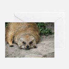 Cute Mongoose Greeting Card