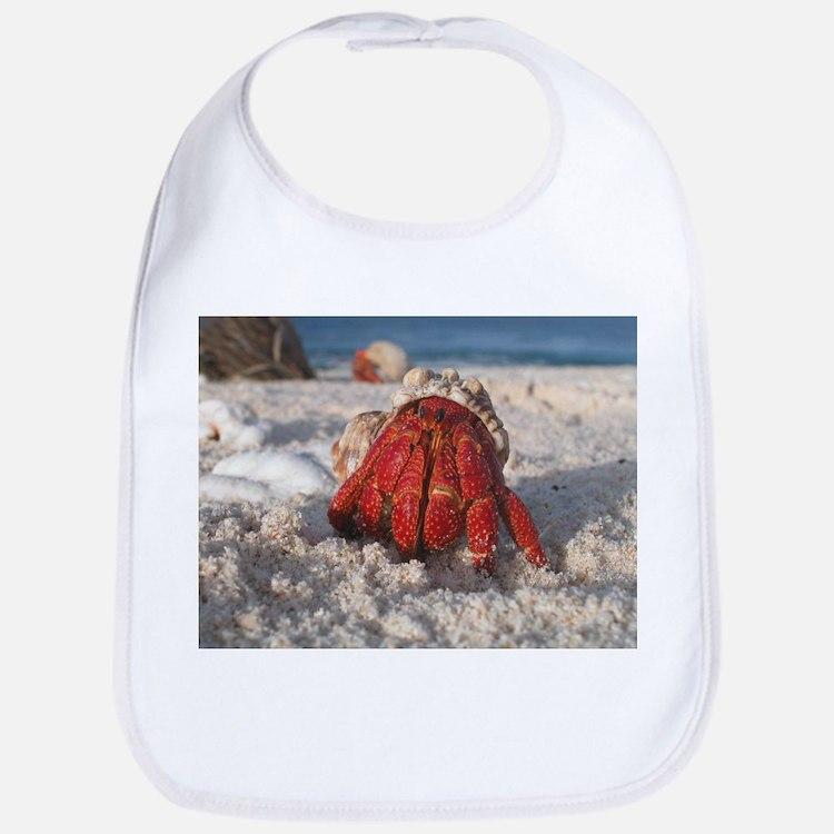Friendly Hermit Crab Bib