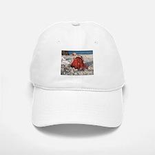 Friendly Hermit Crab Baseball Baseball Cap