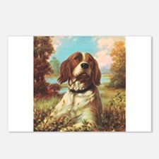 Vintage Brittany Spaniel Postcards (Package of 8)