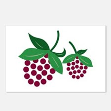 Raspberry Bunch Postcards (Package of 8)
