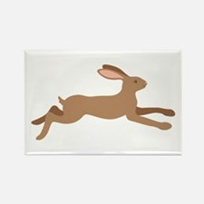Leaping Rabbit Magnets