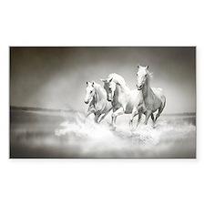 Wild White Horses Decal