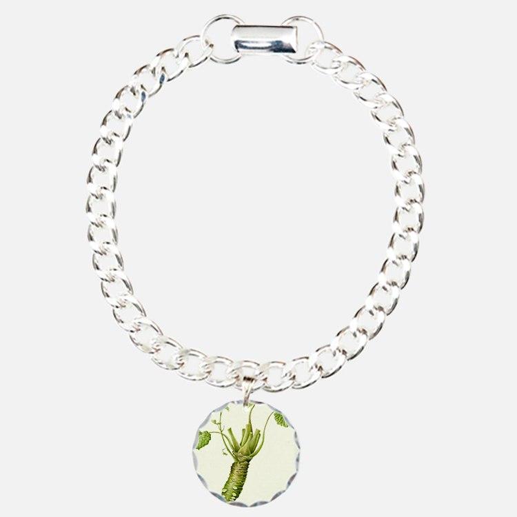 Wasabi Plant Bracelet