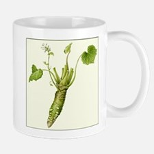 Wasabi Plant Mugs
