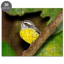 Bananaquit Puzzle