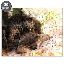 Daphne Puzzle