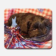 Bentley's 4th of July Mousepad