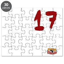 SO17 Puzzle