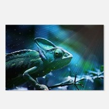 Chameleon Postcards (Package of 8)
