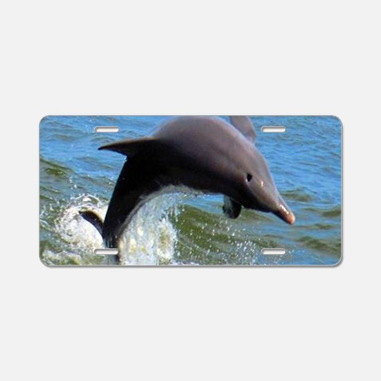 Dolphin Aluminum License Plate