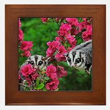 Flowers #13 Framed Tile