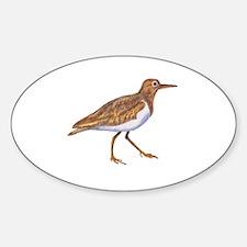 Cute Shorebirds Sticker (Oval)