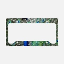 Perfect Peacock License Plate Holder