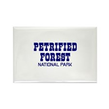 Petrified Forest National Par Rectangle Magnet (10