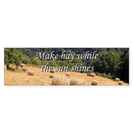 make hay while the sun shines Make-hay-while-the-sun-shines opportunities don't come past your desk  everyday sometimes you have to work so hard to find an opportunity that when  one.
