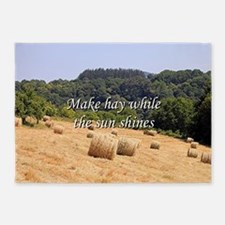 Make hay while the sun shines hay b 5'x7'Area Rug