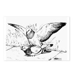 Pigeon Mates Postcards (Package of 8)