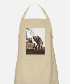 Border Terrier and Rat Apron