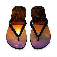 Sunset Field Flip Flops