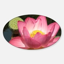Lovely Lotus Decal