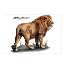 Asiatic Lion Postcards (Package of 8)