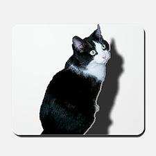 Black & white cat Mousepad