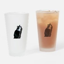 Black & white cat Drinking Glass